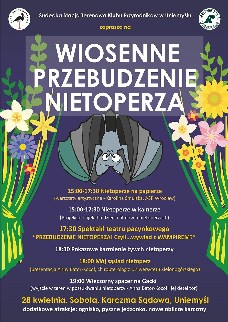 wiosenne przebudzenie nietoperza_obraz